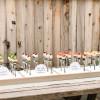 Tips For Spring & Garden Wedding Favors