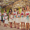 Shopping Tips For The Perfect Casual Beach Wedding Dress