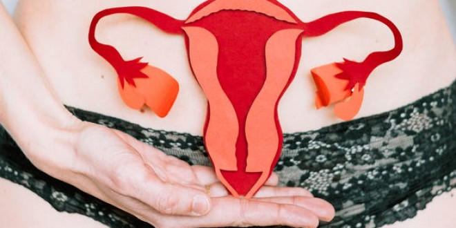 Cervix 101: 6 Interesting Things Everyone Should Know About the Cervix