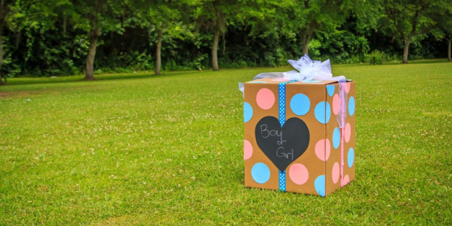 Groom's Sister Plans Gender Reveal Party for the Same Day as His Wedding