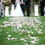 texas-wedding-officiant